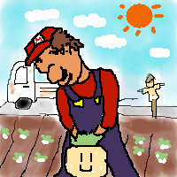 SUPER MARIO BROS. 2 (SUPER MARIO USA)_0003